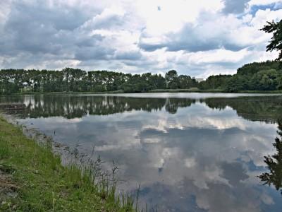 Eckhardtův rybník