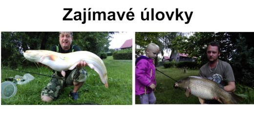 Ulovky072016